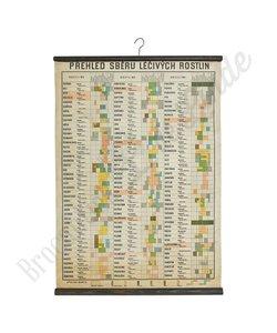 Oude schoolplaat overzicht medicinale planten