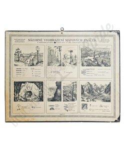 Vintage schoolplaat 'Natuur No. 7'