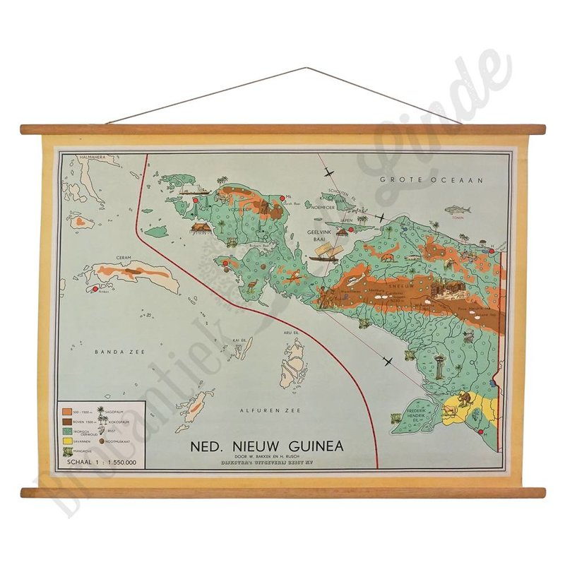 Oude landkaart 'Nieuw Guinea'