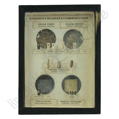 Vintage vitrinelijst No. 20