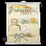 Anatomische schoolplaat 'Geleedpotigen'