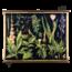 Botanische schoolplaat (Giftige planten)