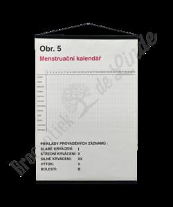 Schoolplaat geslachtsdelen No. 5 (Menstruatie kalender)