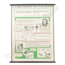 Scheikundige schoolplaat (Uit de geschiedenis van levensontwikkelingsperspectieven)