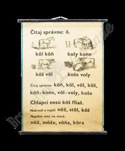 Schoolplaat spelling (Citeer rechts: ô)