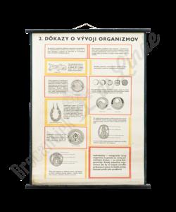 Scheikundige schoolplaat (Organismen)