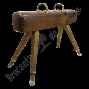 Vintage turnpaard