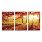 ART-BOX WANDDECORATIE Design SH-71621ABC  ( 3 panelen )