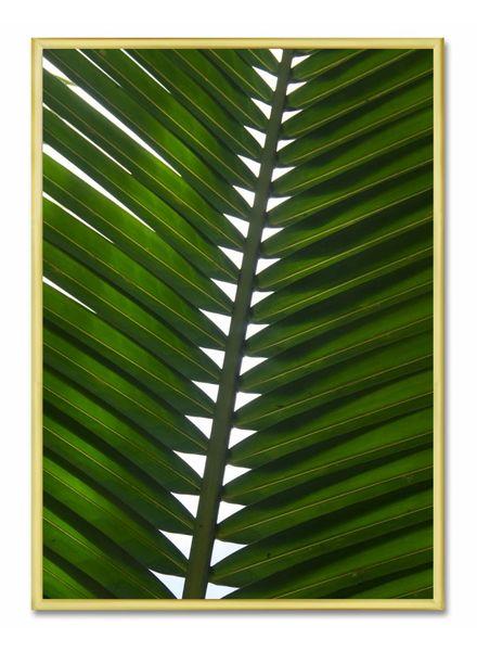 livstil Green Palm Leaf
