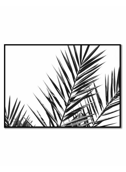 livstil Palm Leaves