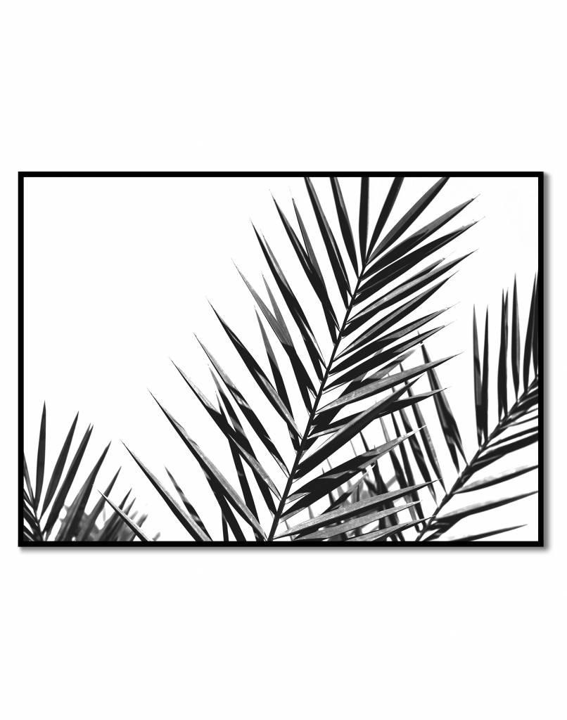 livstil Palm Leaves