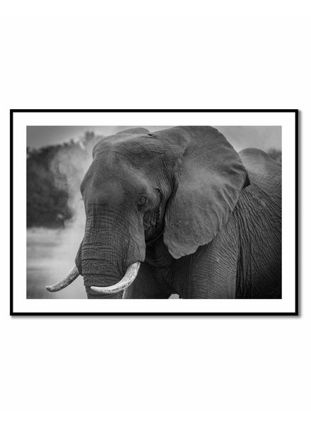 livstil Elephant Grey
