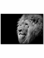 livstil Lion Black