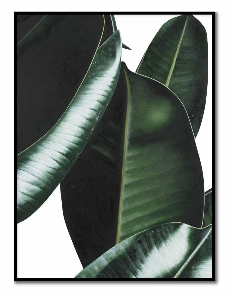 livstil Plant