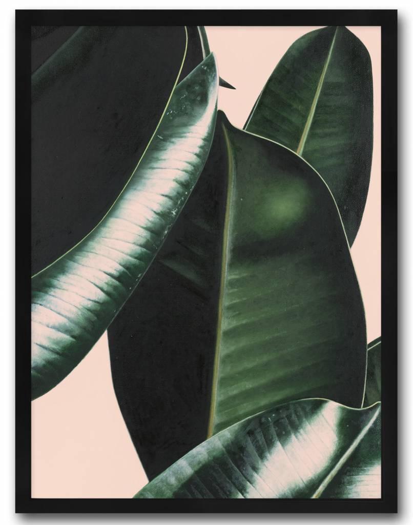 livstil Plant Pink