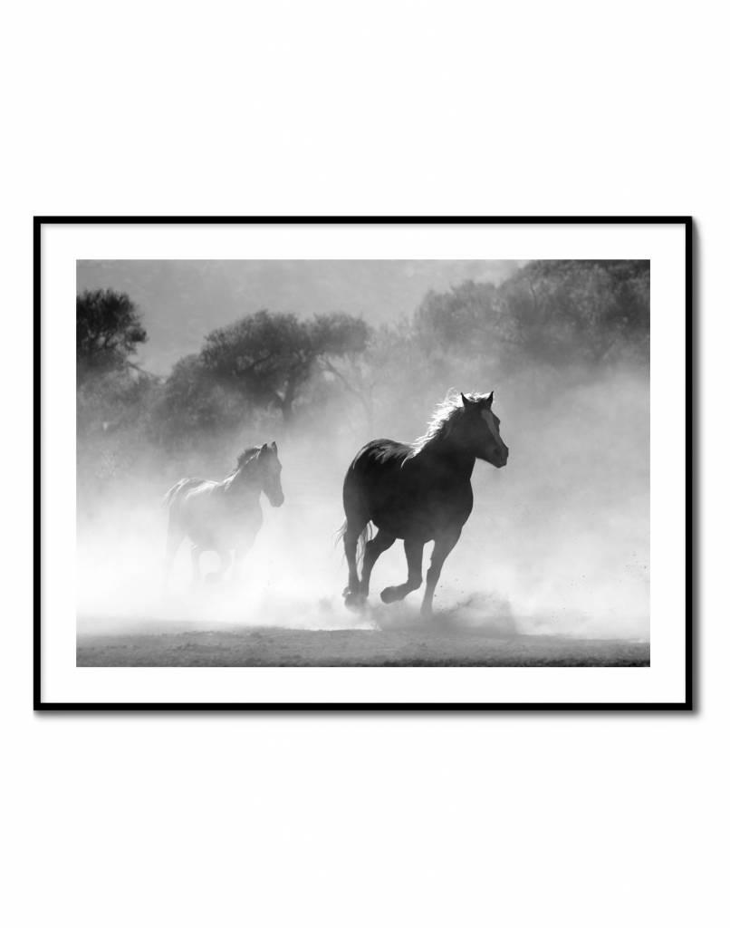 livstil Black Horses