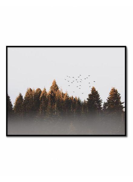 livstil Autumn Forest