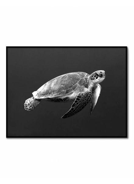 livstil Turtle Dark Ocean