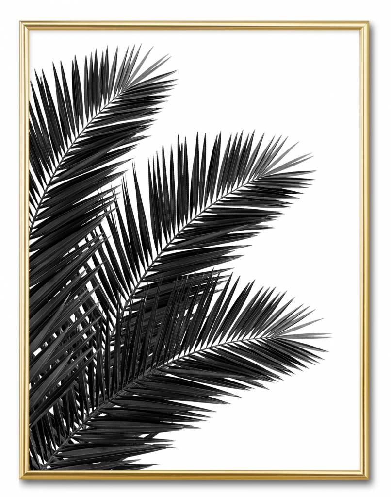 livstil Palm Leaves - Rechts