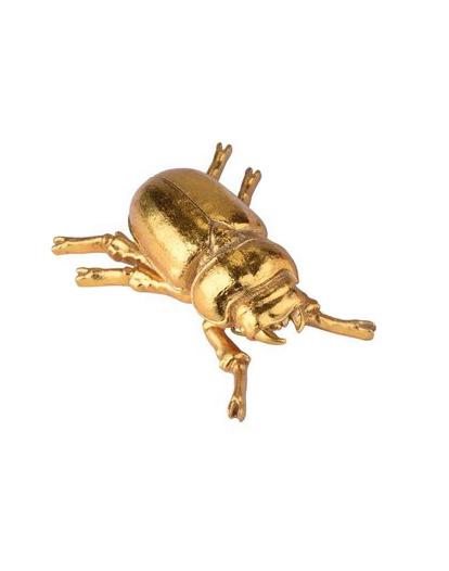 GIFT Company Insekt Skarabäus