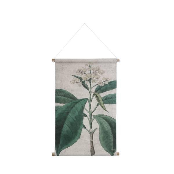 HKliving HK living Botanisch muurdecoratie, schoolplaat canvas Botanisch - maat M