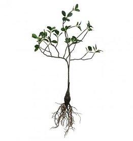 Hk Living Hk living groene tak met wortel 53 cm