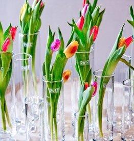 Dutz bloemenvaasjes op voet