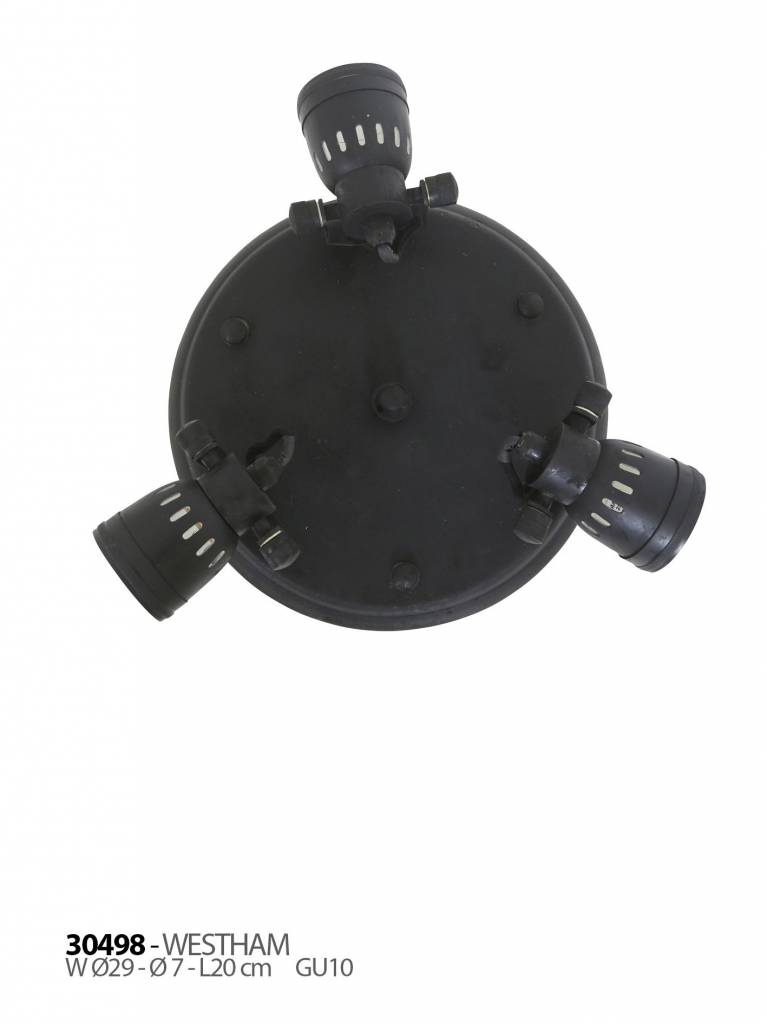 Industriële verlichting Plafondlamp Westham Antiek Mat Zwart