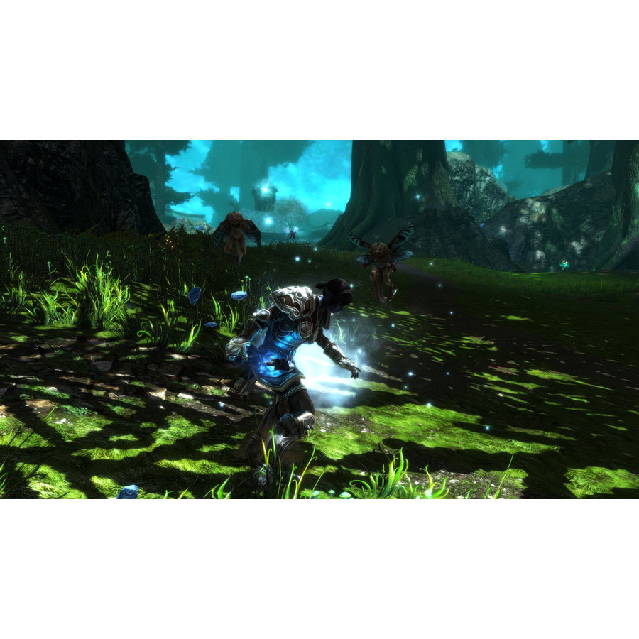 Kingdoms of Amalur Re-Reckoning - Collector's Edition - PC