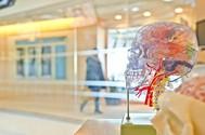 5x de leukste braintraining apps