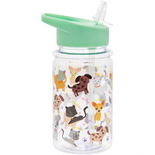 Lesser & Pavey Wasserflasche Cats & Dogs