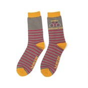 Miss Sparrow Mens Socks Bamboo Wheely Awesome Dad grey