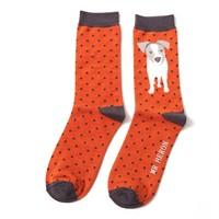 Miss Sparrow Männer-Socken Bamboo Jack Russel Pup orange