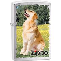 Aansteker Zippo Golden Retriever