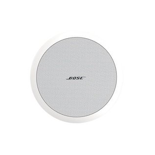 Bose FreeSpace DS 100F VA