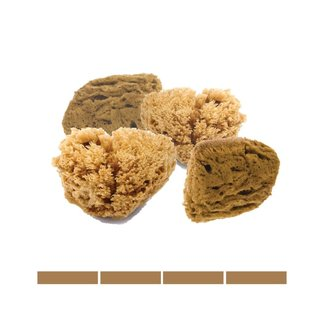 Natural Intimacy Eco Facial sponges Unbleached