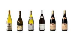 enkele van de meest verrassende Bourgognes uit het Dercor-gamma !