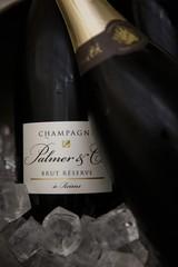 Producten getagd met champagne palmer
