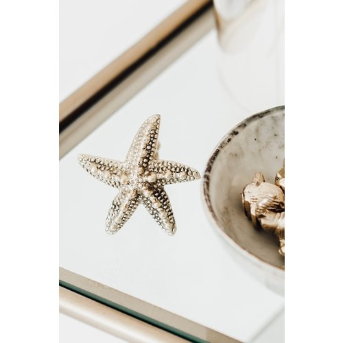 Doing Goods Ruby Seastar Knob Set Of 2