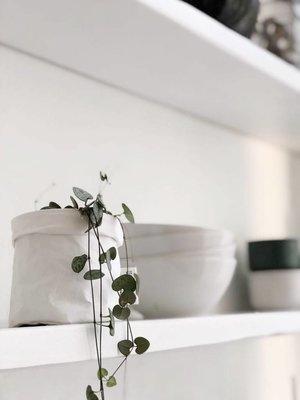 UASHMAMA® Sac à plantes blanc