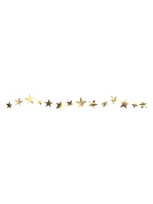 Delight Department  Star Shaped Garland | 3 meters