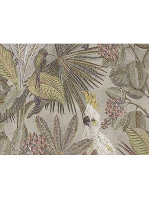 BN Walls Panthera wallpaper | Cockatoo