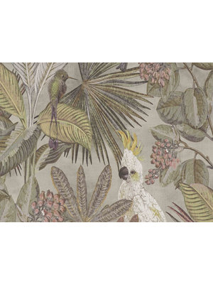 BN Walls Wallpaper Panthera | Cockatoo