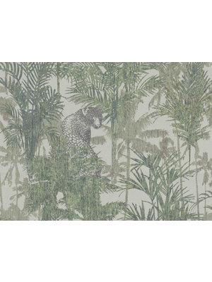 BN Walls Wallpaper Panthera | Tropical