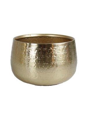 Characteristic Golden Pot 26x15