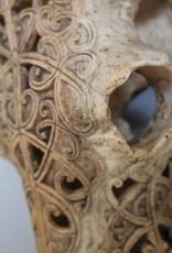 Opengewerkte decoratieve skull
