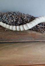 Hoorn ivoor
