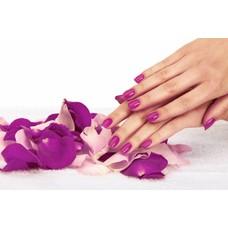 1 Daagse Basis opleiding Acryl met gratis manicure incl. startpakket  en certificaat €290,00 incl.BTW