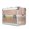 Mega Beauty Shop® Aluminium Koffer Gold Unicorn