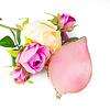 Mega Beauty Shop® Nail Art Display Stone Palet Roze (bladvorm)